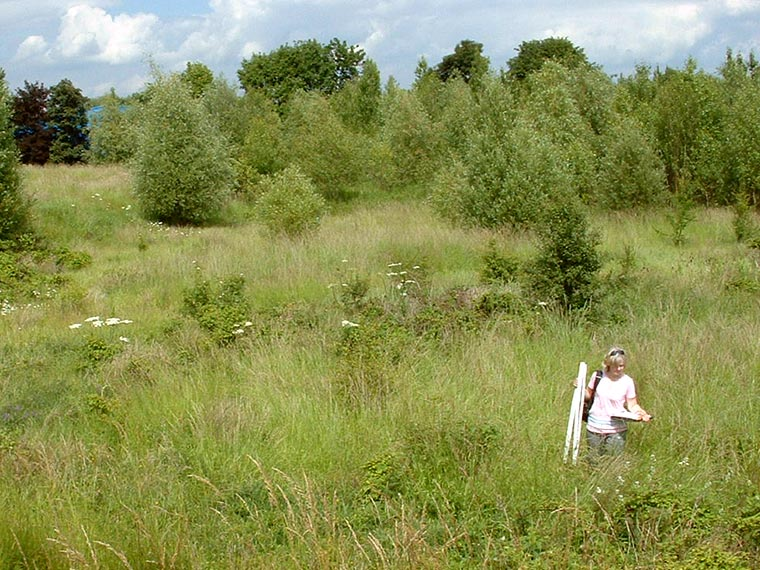 Botanical Survey